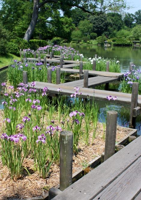 Foto Friday: Botanical Gardens, St. Louis, USA